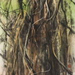 Contemporary Chinese Brush Painting of Redwood Trunk