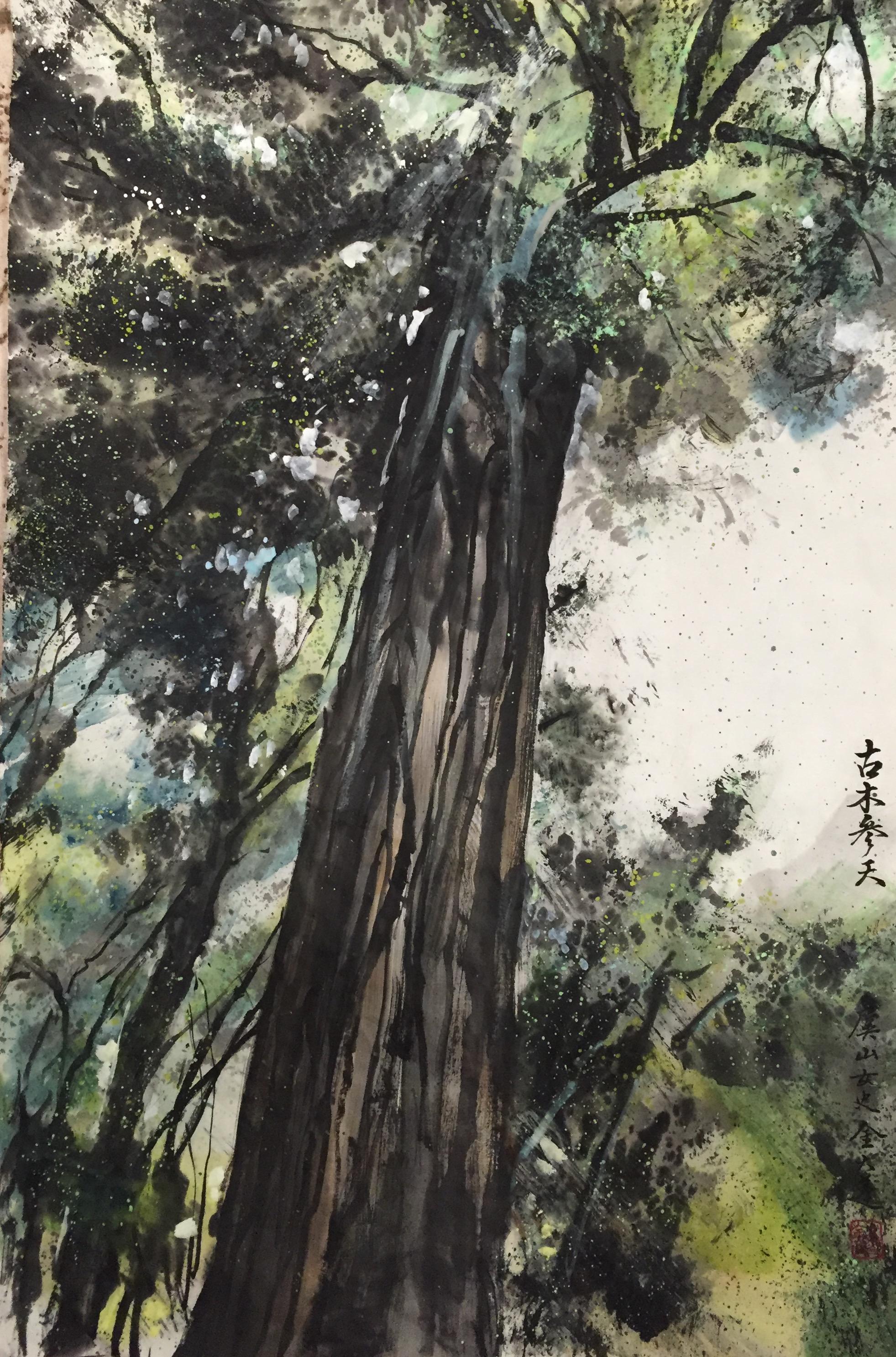 Old Redwood trees in Big Sur