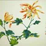 chrysanthemum flowers in orange and yellow.