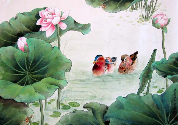 Two Ducks swiming in the pond with lotus flowers.