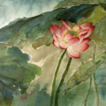 Beautiful solitary red lotus blossom in the contemporary Chinese brush style