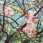 Chinese abstract watercolor painting of pink flowers in tree branches against a blue sky