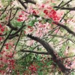 Chinese watercolor abstract painting of pink cherry blossom flowers on the tree brancheses